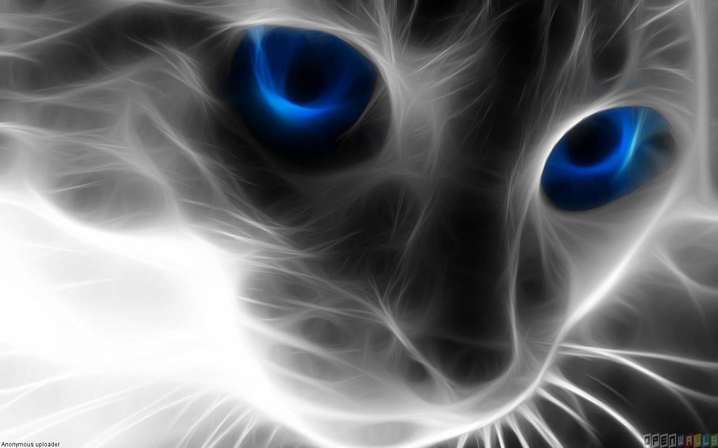 Abstract cat with blue eyes wallpaper 17808   Open Walls 1440x900