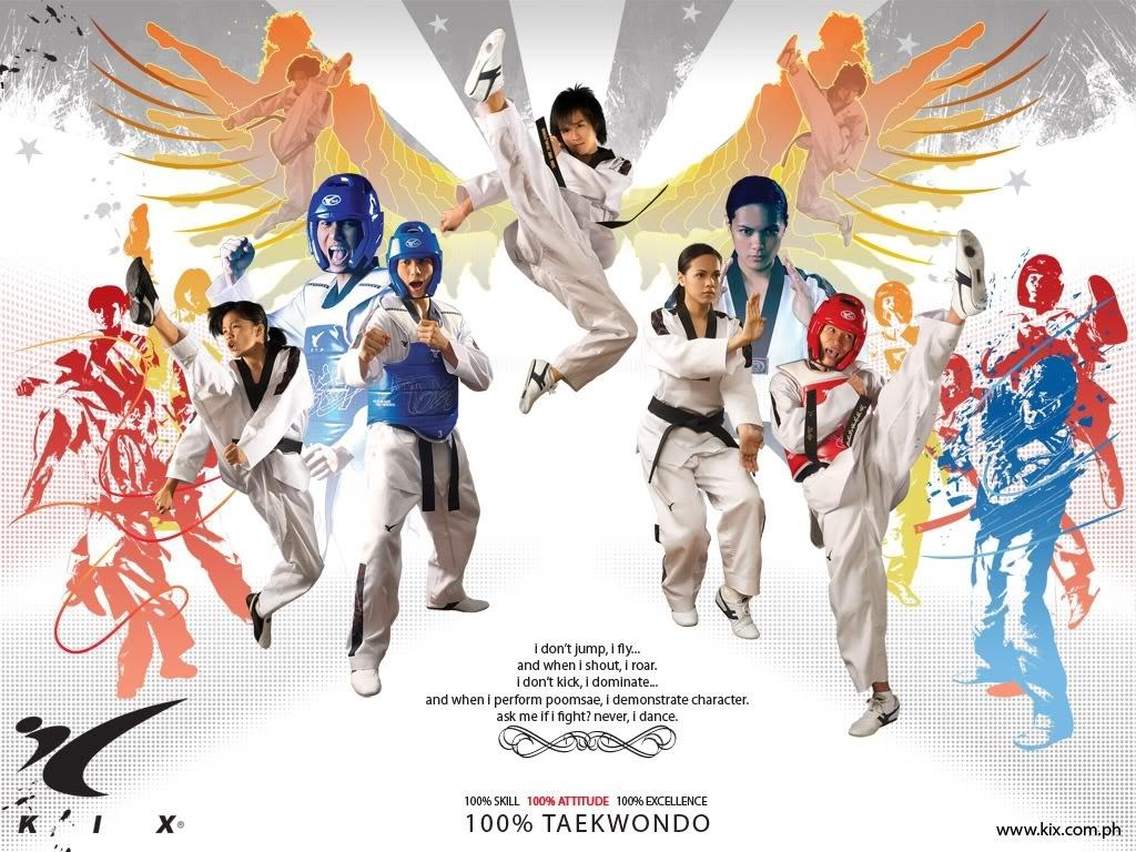 Taekwondo Wallpaper 1024x768 Taekwondo 1024x768
