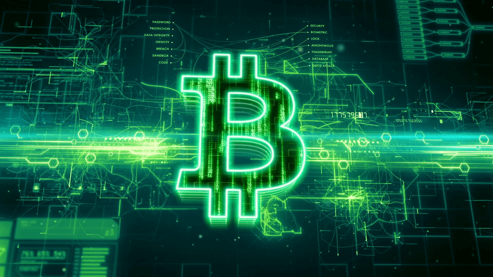 4K Bitcoin Wallpapers   Top 4K Bitcoin Backgrounds 1920x1080