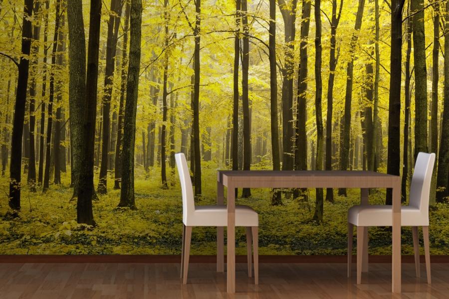 Wallpaper dinding gambar pohon untuk ruang makan atau dining room 900x600