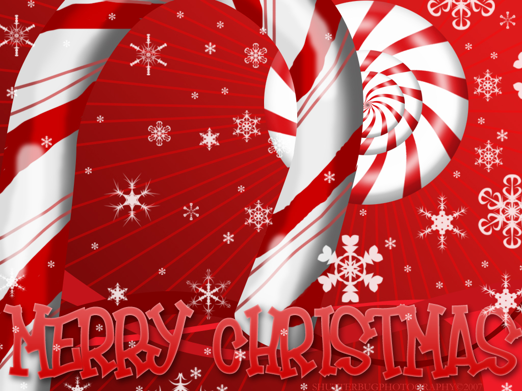 christmas candy canes   Christmas Photo 9405176 1024x768