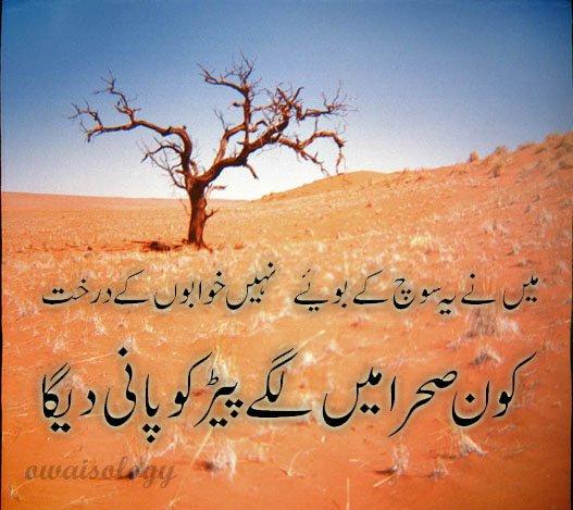 Daer Tube Urdu sad poetry wallpapers 527x469