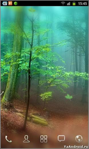 Forest Live Wallpaper WallpaperSafari