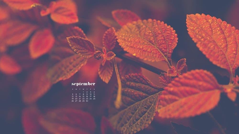 September 2021 wallpapers 35 FREE calendars for desktop and phones 1000x562