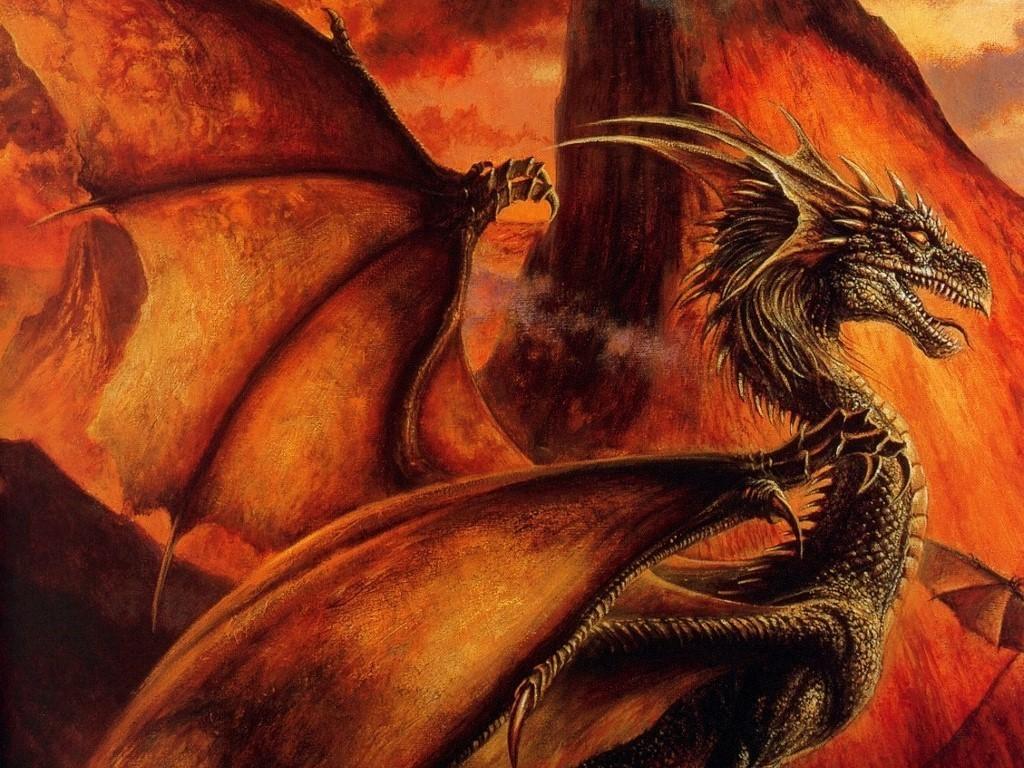 Fire Dragon   funkyrach01 Wallpaper 16754300 1024x768