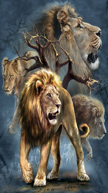 Wallpapers iPhone Wallpapers HD Wallpapers 360x640 Screen Lion 360x640