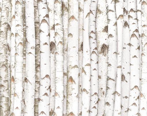 Photo Wall Mural Birch Wall 400x280 Wallpaper Tree Forest Wood Trunk 510x400
