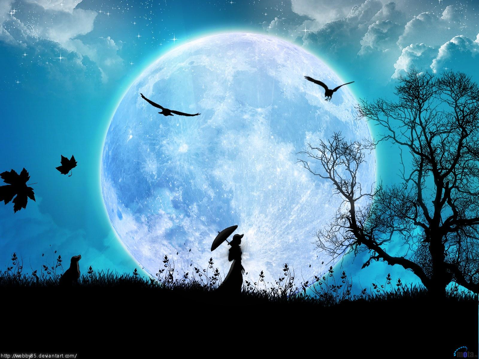 Beautiful Night Sky wallpaperWallpaper Background Wallpaper Background 1600x1200