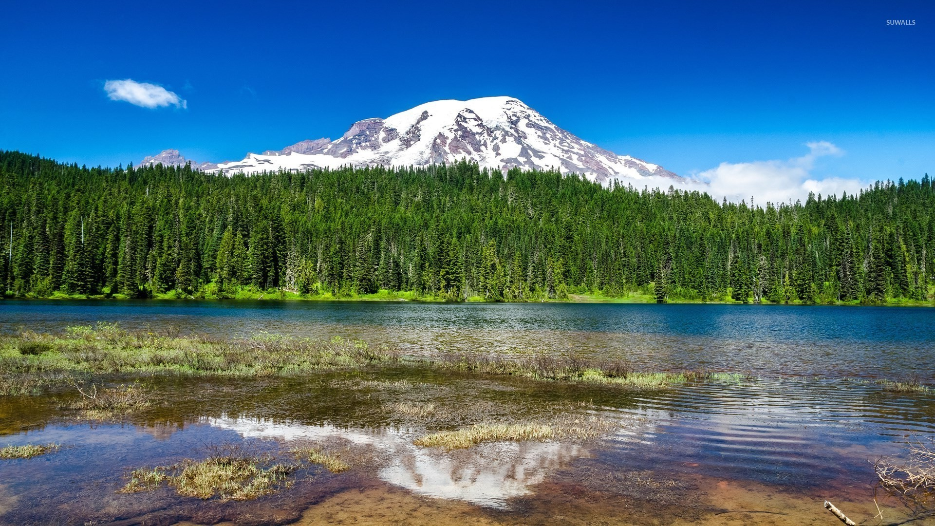 Mount Rainier wallpaper   Nature wallpapers   22657 1280x800