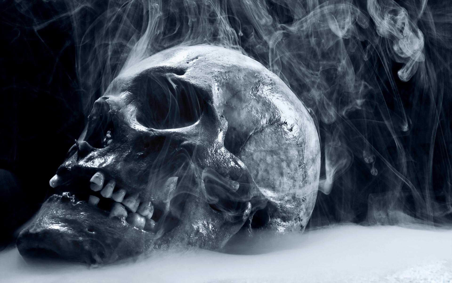 Scary Frozen Skull Wallpapers HD 1920x1200