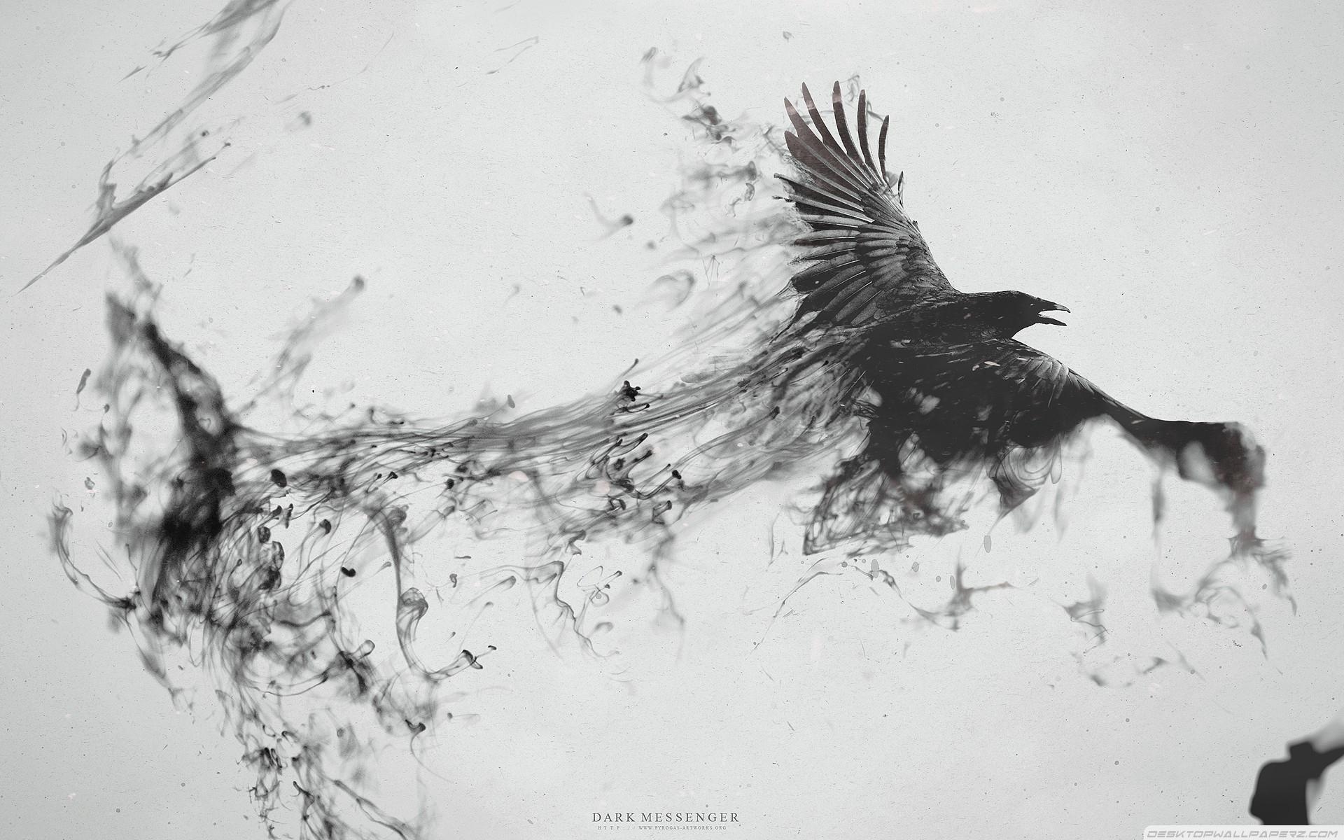 Dark Messenger Birds Digital Artistic Raven Bird 19201200 Wallpaper 1920x1200