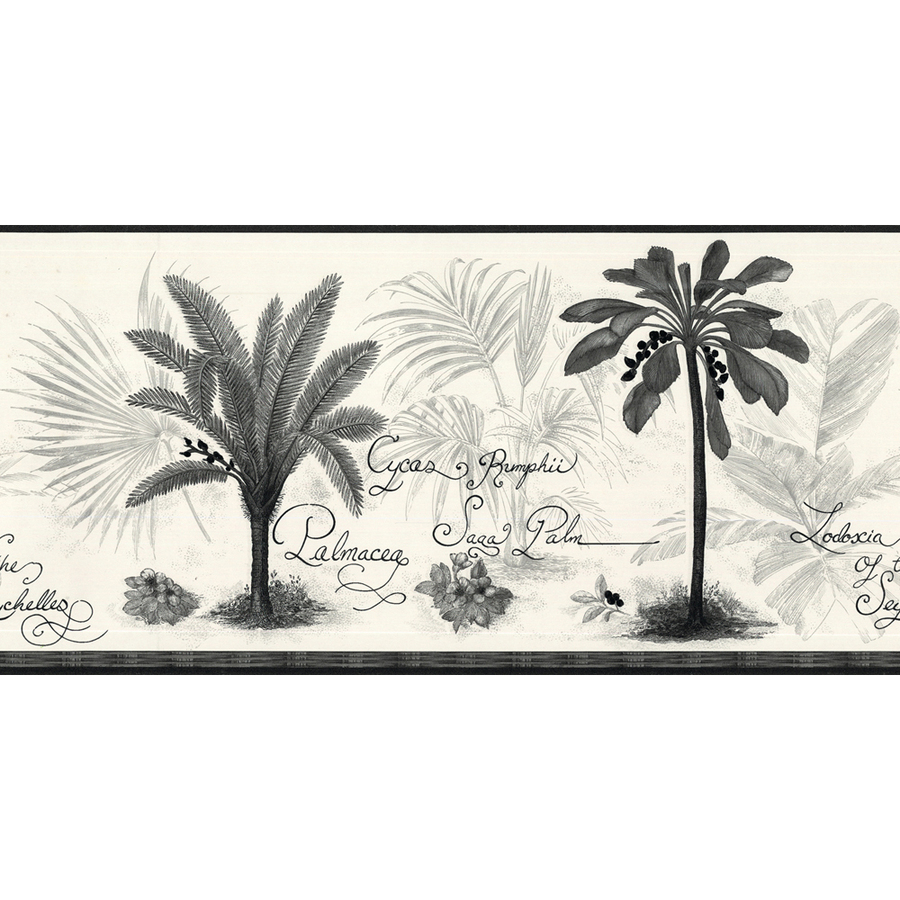 Black And White Palm Tree Prepasted Wallpaper Border at Lowescom 900x900