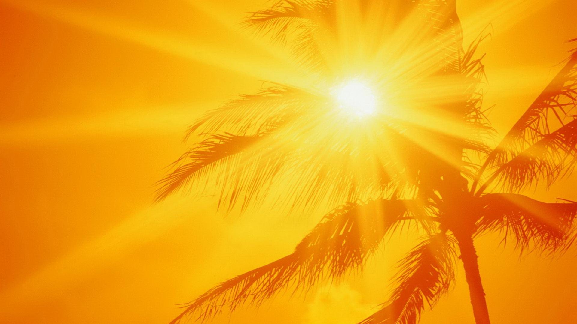 The Summer Heat Google Skins Feel The Summer Heat Google Backgrounds 1920x1080