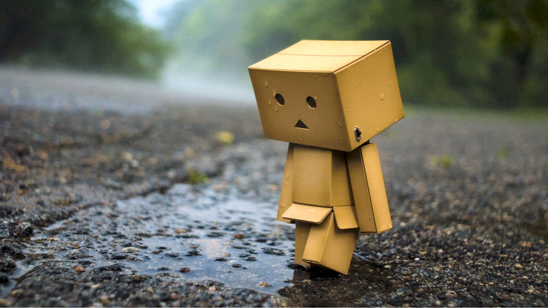 Danbo Wallpapers 1920x1080 874VC8G   4USkY 1920x1080