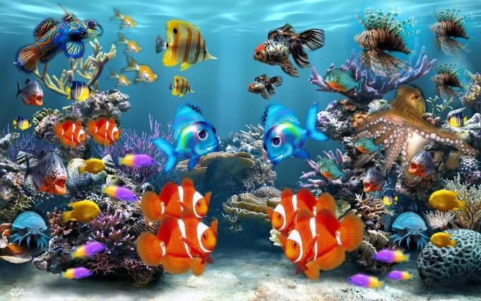 Ocean Fish Background 680x425