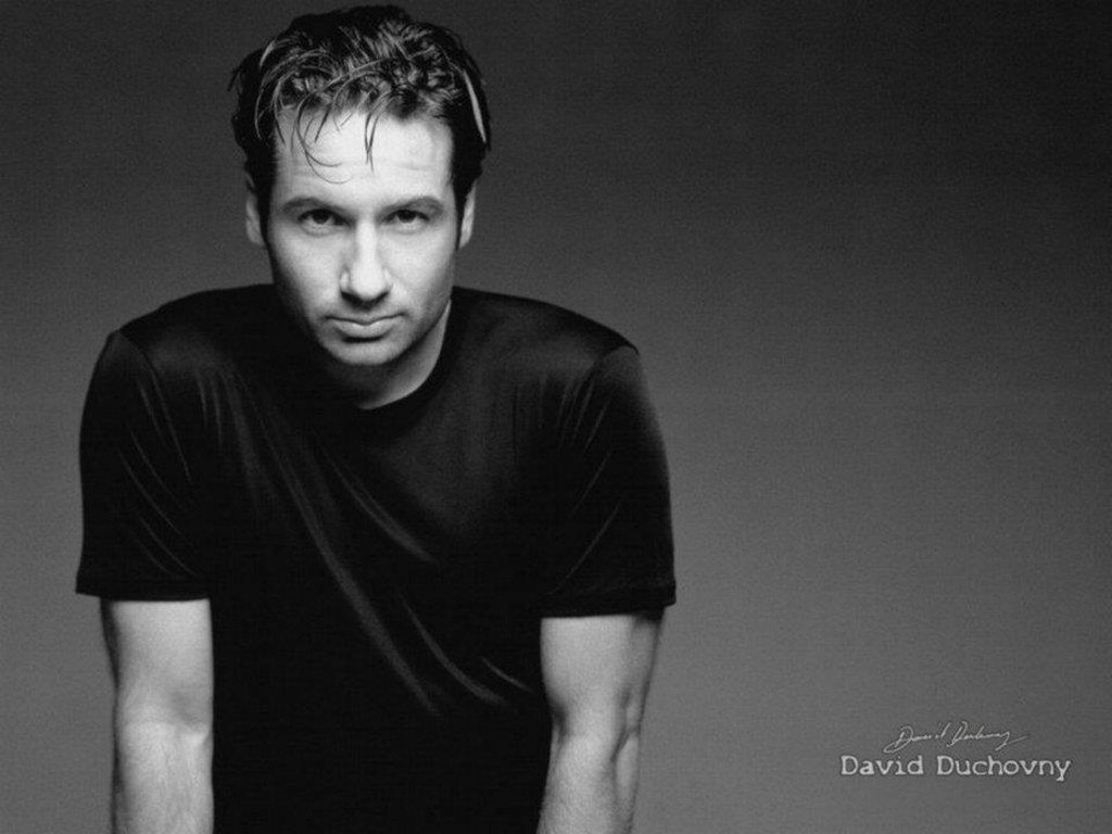 David Duchovny images David Duchovny HD wallpaper and background 1024x768