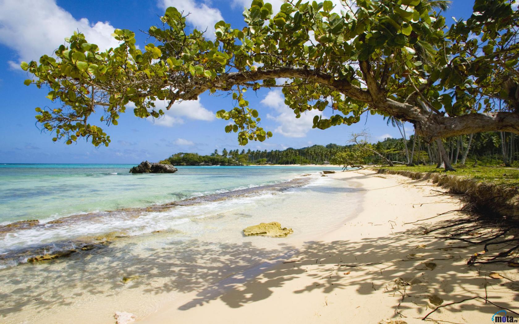 Download Wallpaper Playa Rincon Dominican Republic 1680 x 1050 1680x1050