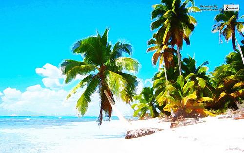 Caribbean Scenery Sandy Beaches wallpaper Flickr   Photo Sharing 500x313