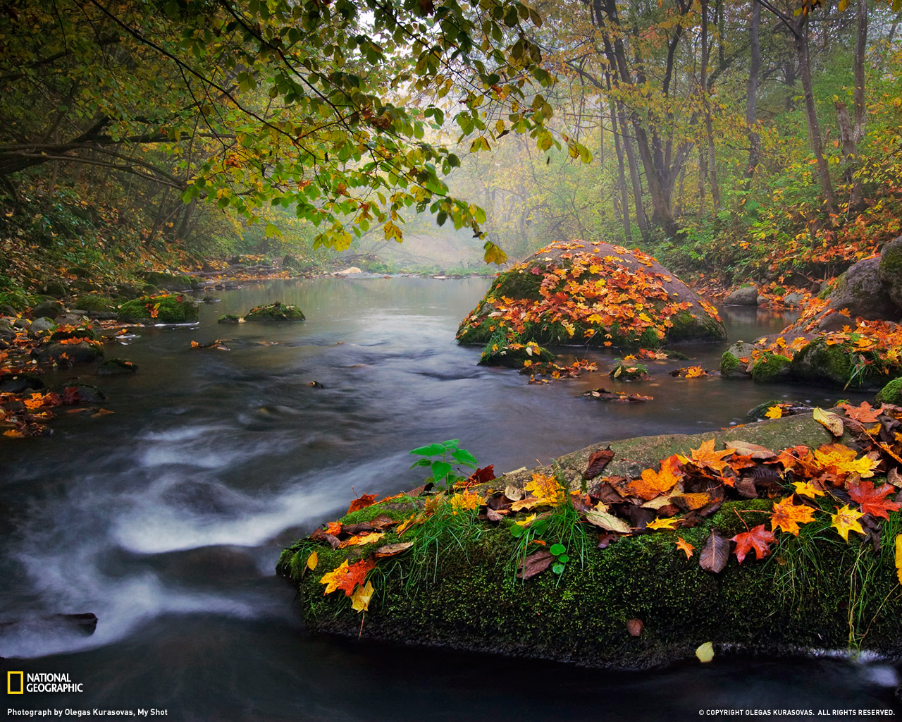 Autumn Landscape Photo Nature Wallpaper National Geographic 1280x1024