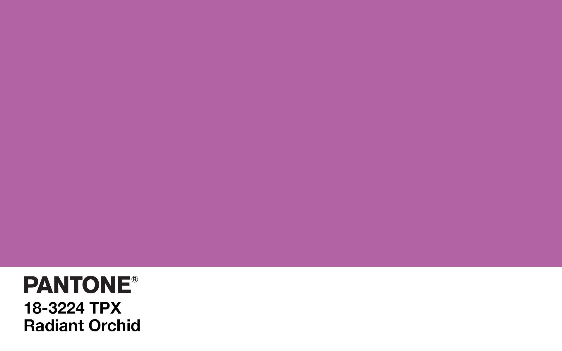 Pantone Radiant Orchid Computer Wallpaper 1920 x 1200 1920x1200