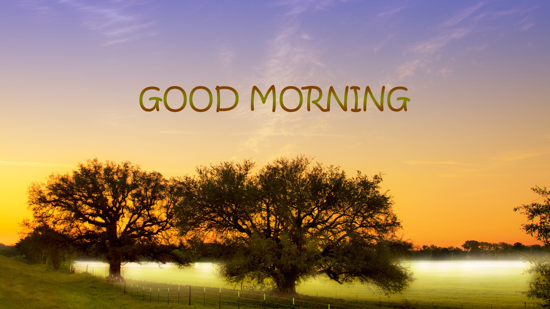 Good Morning HD Wallpaper Pictures Hd Wallpapers 1920x1080