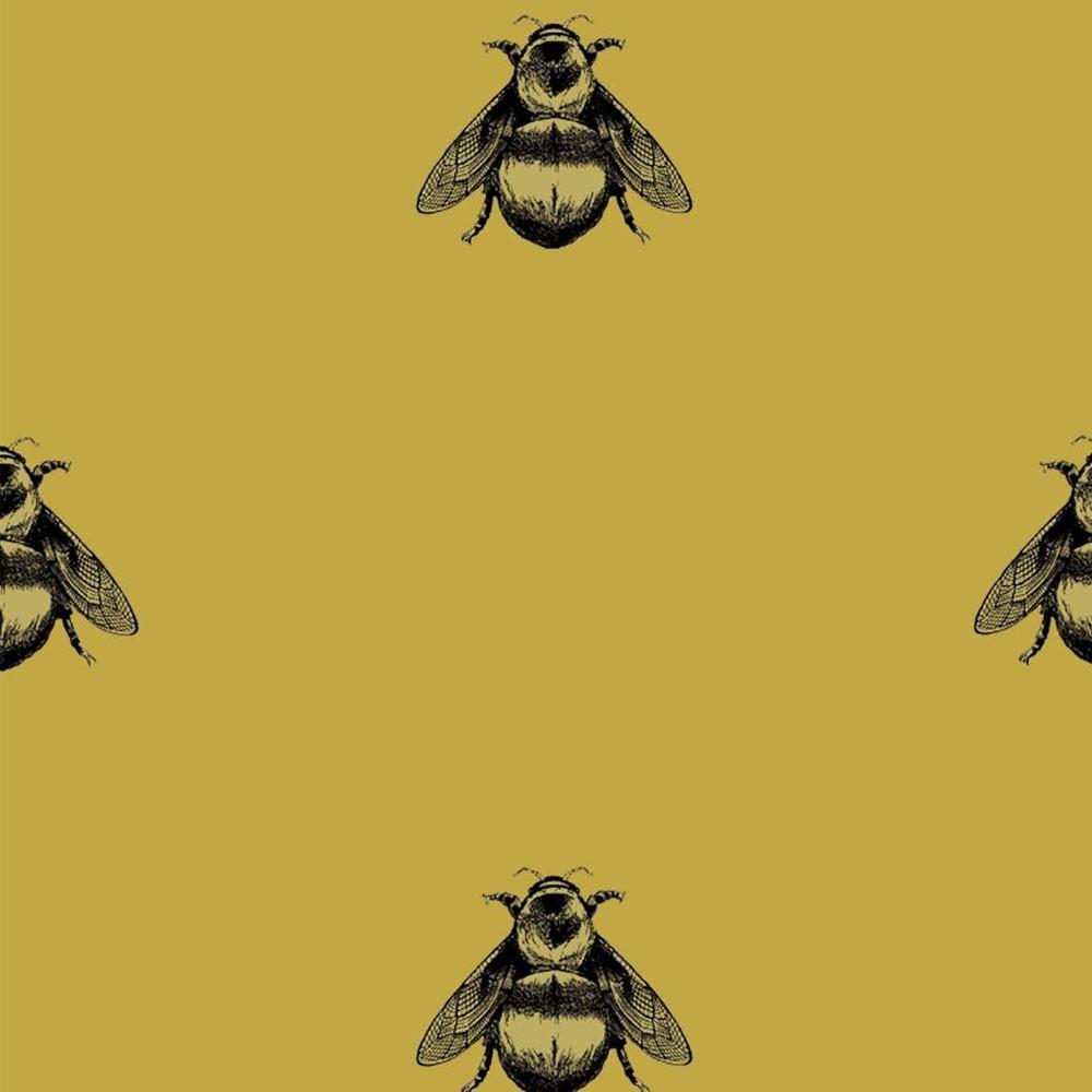 50 Napoleon Bee Wallpaper On Wallpapersafari