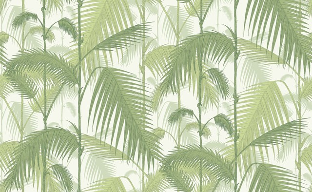 1001 Palm Jungle Wallpaper   Traditional   Wallpaper   by Cole Son 640x394