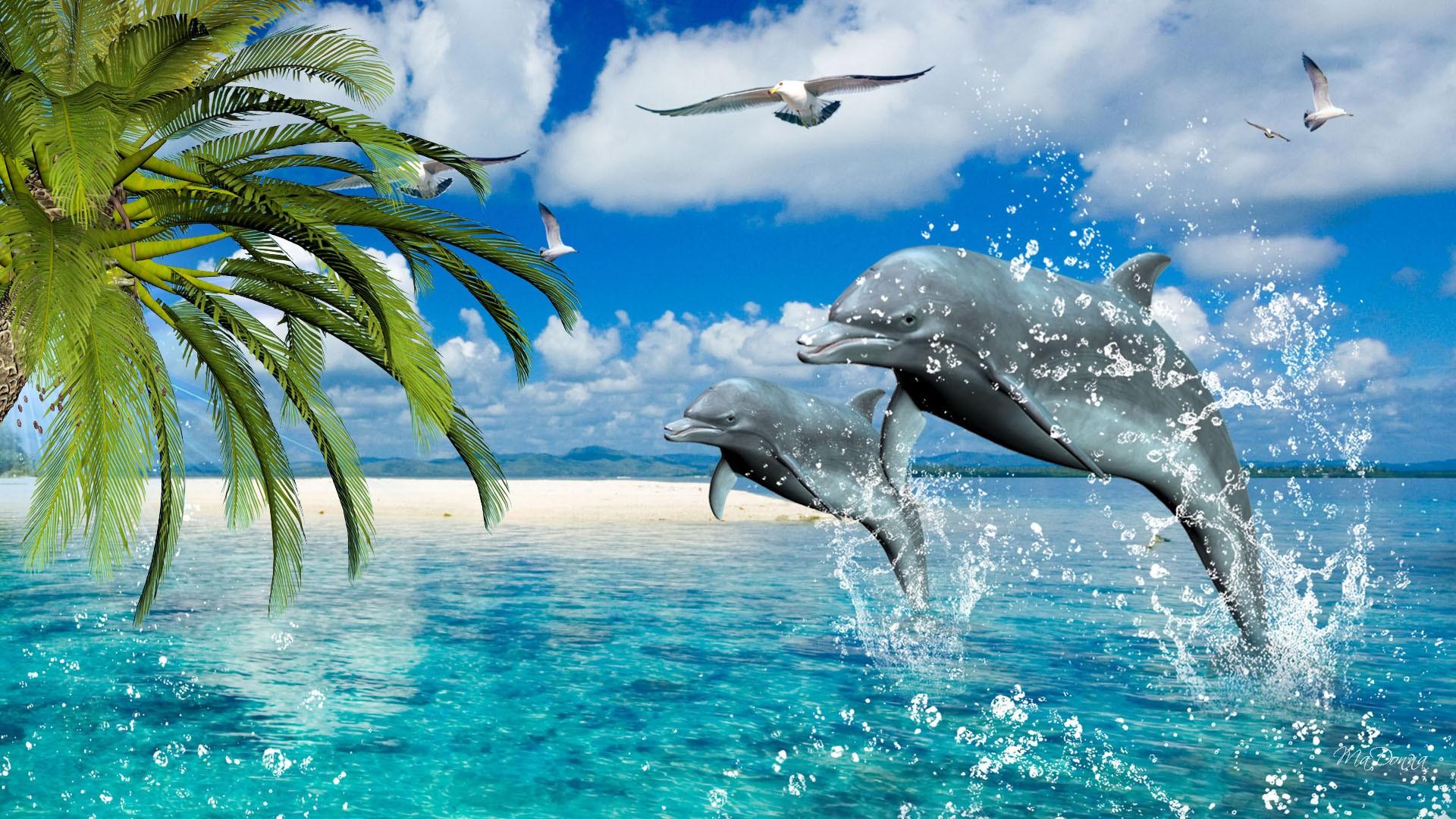 обои широкоформатные на рабочий стол бесплатно море и дельфины № 217017 без смс