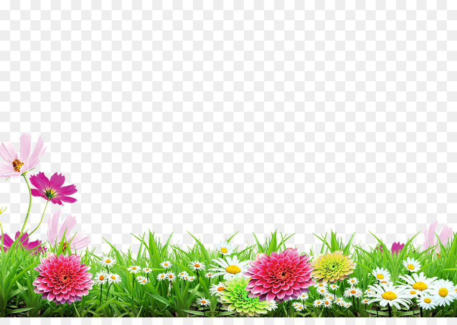 Spring Background Png Spring Backgroundpng Transparent 900x640