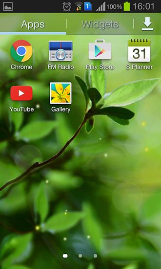 Spring buds fr Android spielen Live Wallpaper Frhlingsknospen 330x550