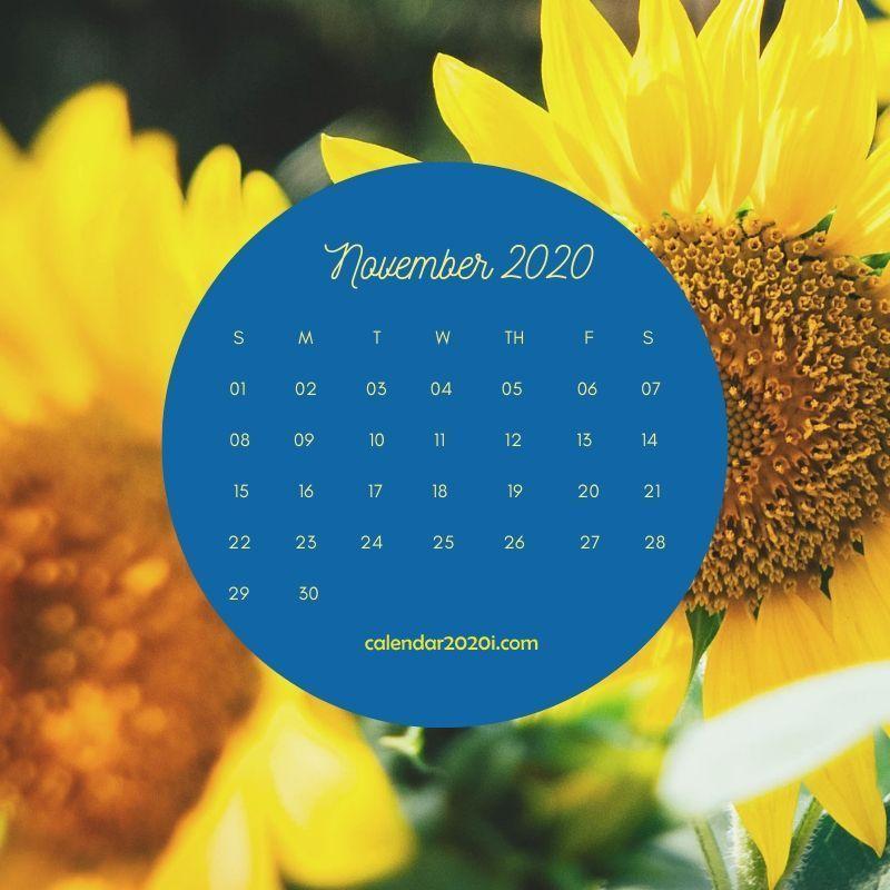 November 2020 Floral Calendar Printable 2020 Calendars Floral 800x800