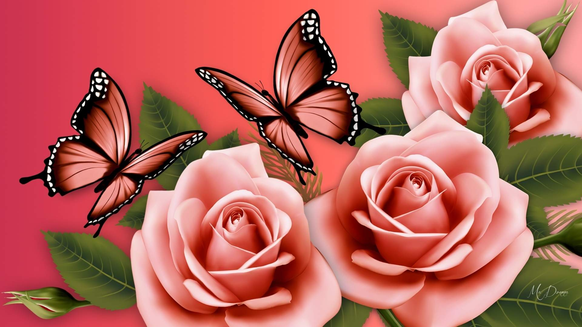 Flowers And Butterflies Wallpaper   36 Group Wallpapers 1920x1080