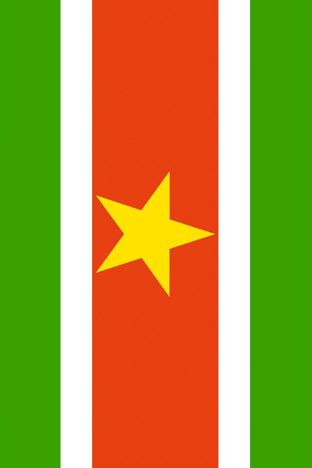 Suriname Flag iPhone Wallpaper HD 640x960