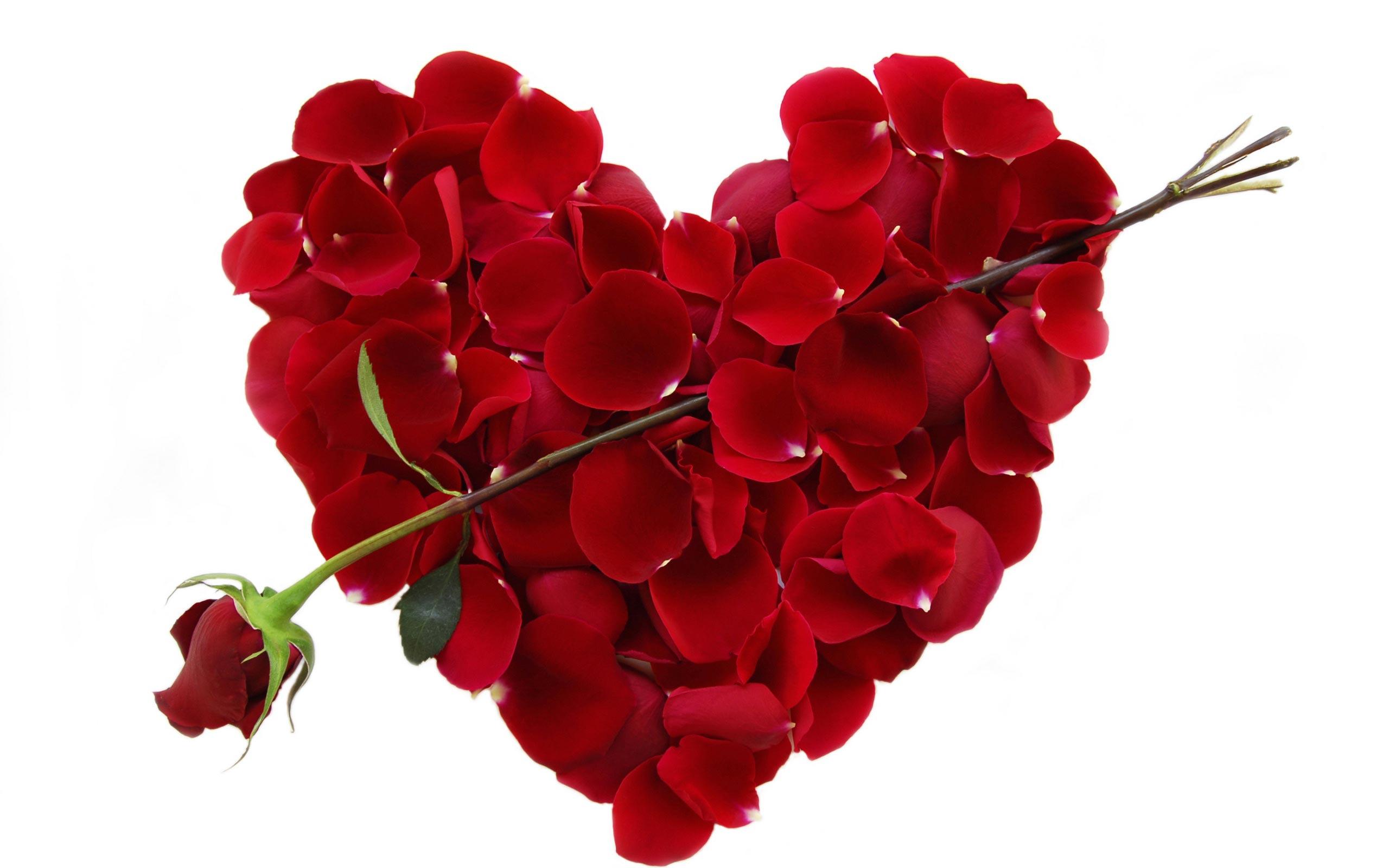 Happy Valentines Day Desktop Background   Wallpaper High Definition 2560x1600