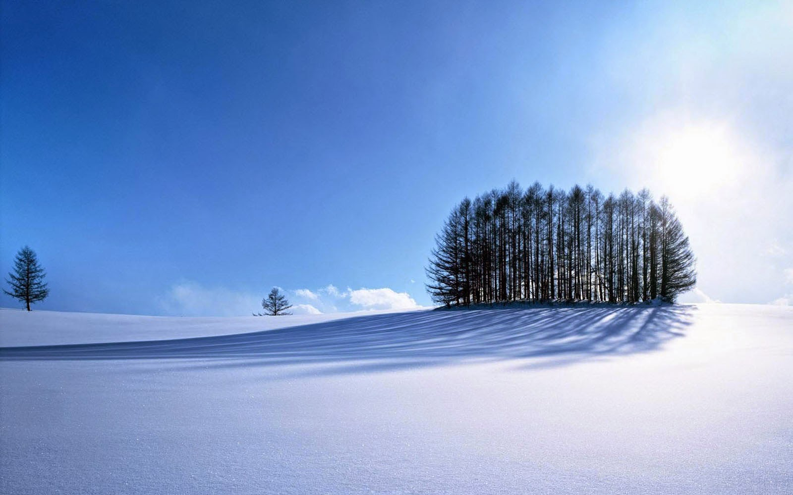 Tag Beautiful Winter Scenery WallpapersBackgrounds Photos Images 1600x1000