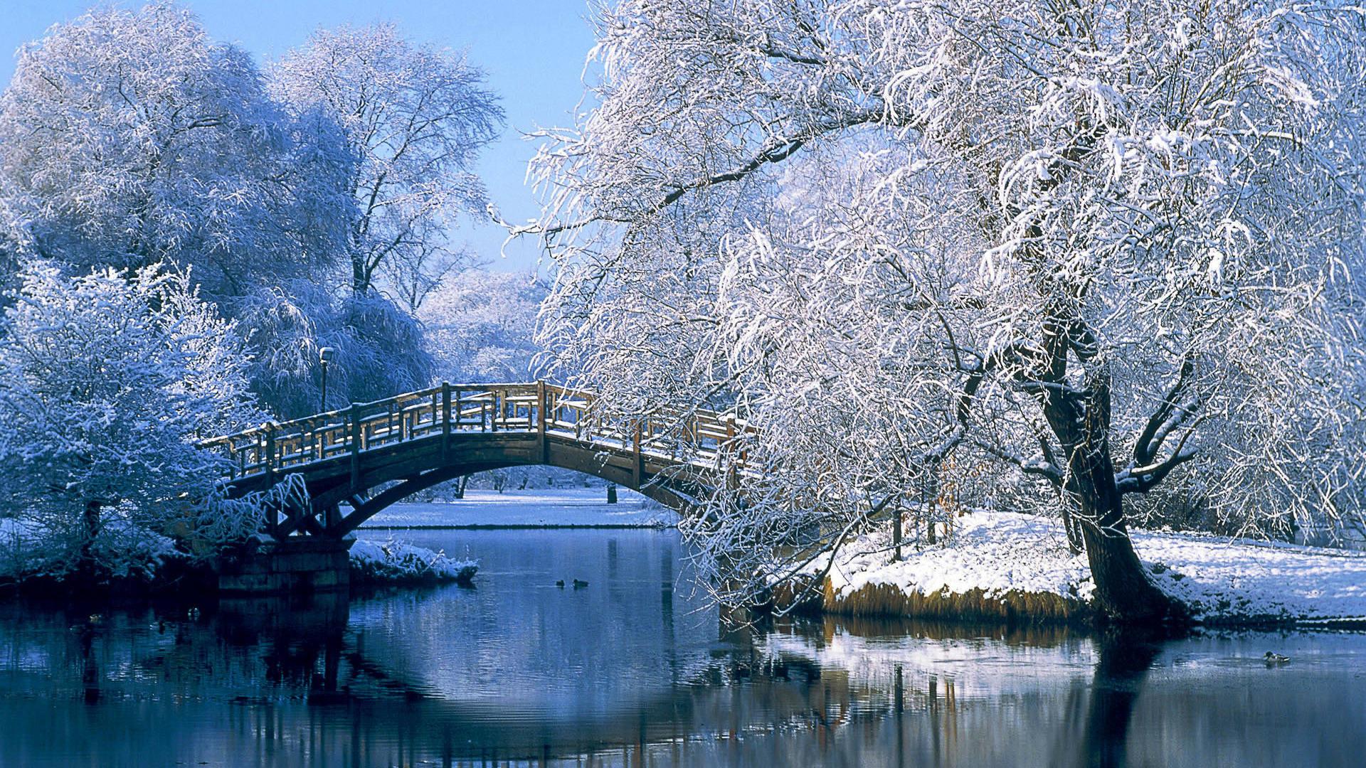 park central hiver nature paysages images albums 1920x1080