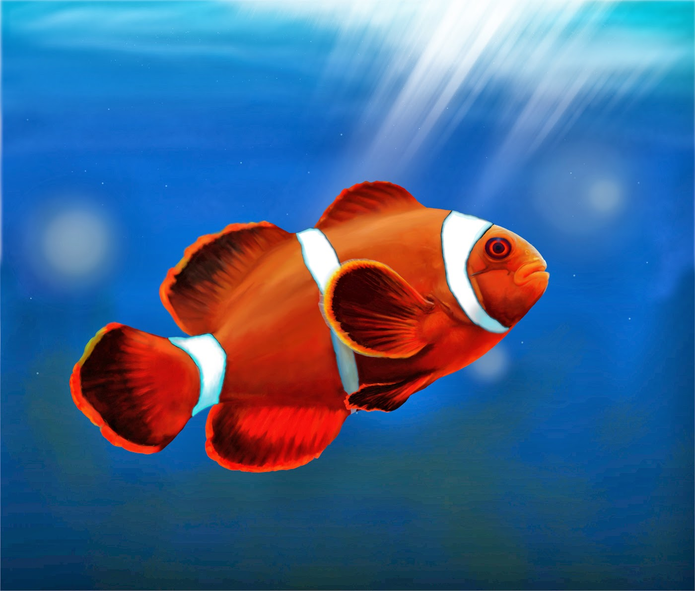 Desktop HD Wallpapers Downloads Clown Fish HD Wallpapers 1400x1192