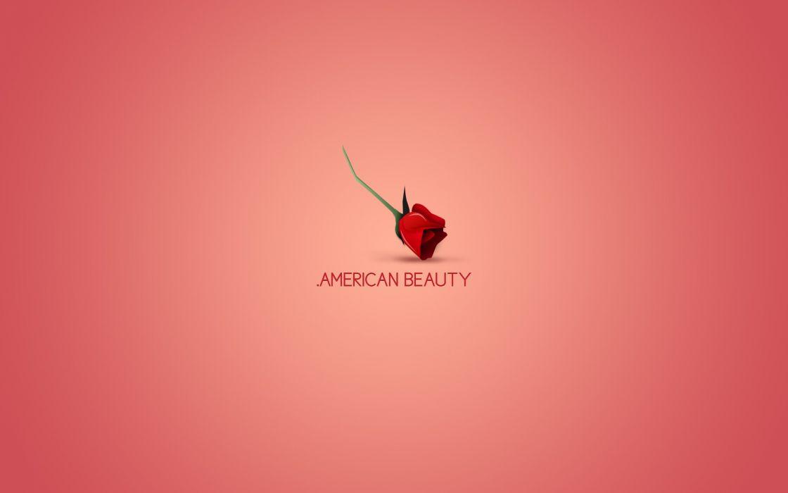 Minimalistic movies American Beauty wallpaper 1920x1200 184226 1120x700