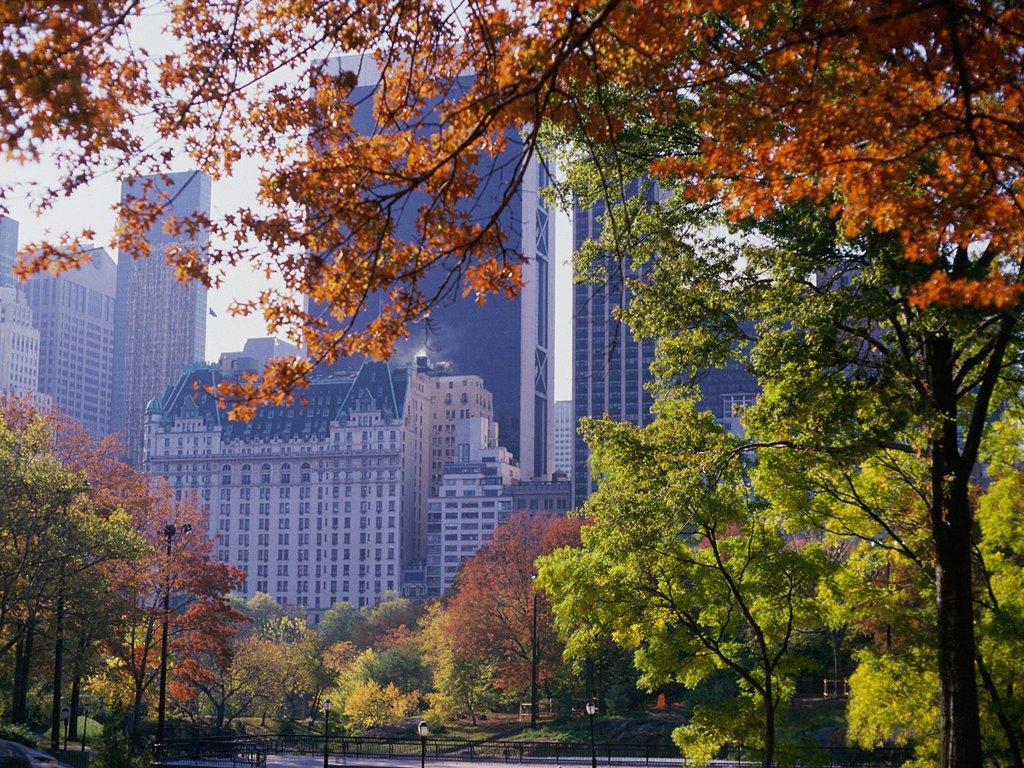 Central Park   Central Park Wallpaper 32583911 1024x768