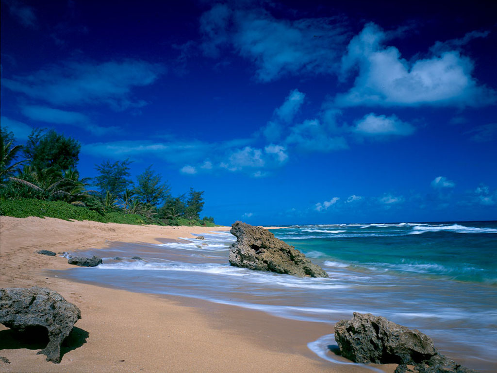 tropical beach wallpaper 040jpg 1024x768