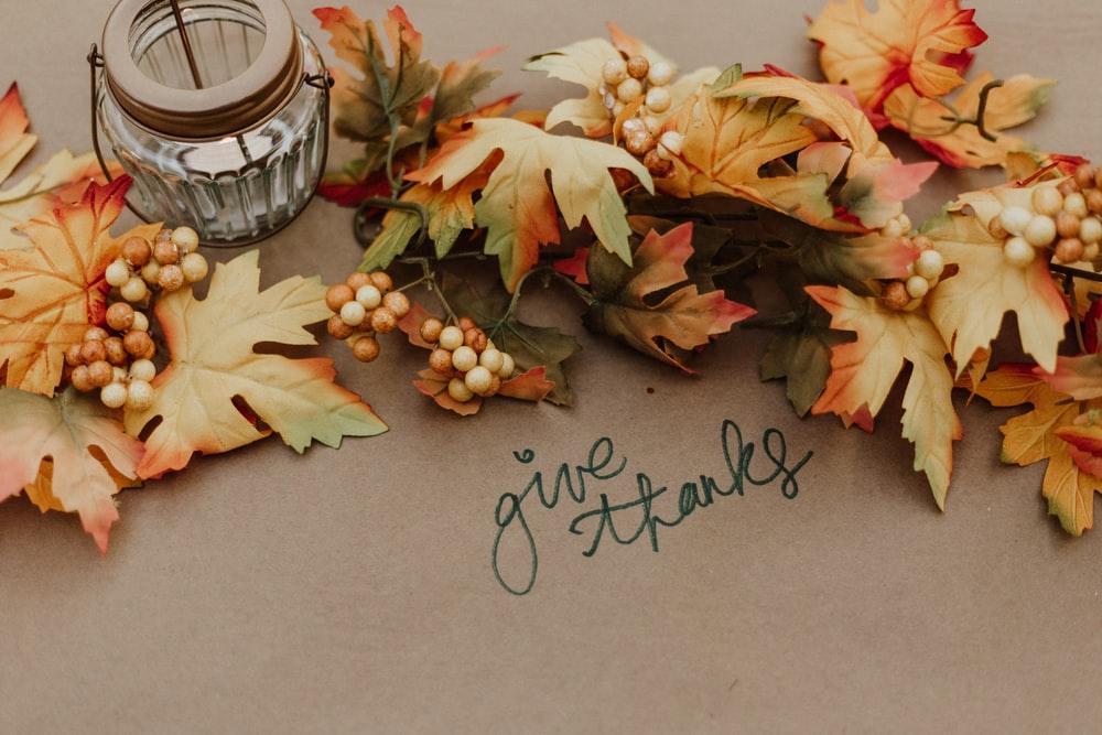 Thanksgiving Wallpapers HD Download [500 HQ] Unsplash 1000x667