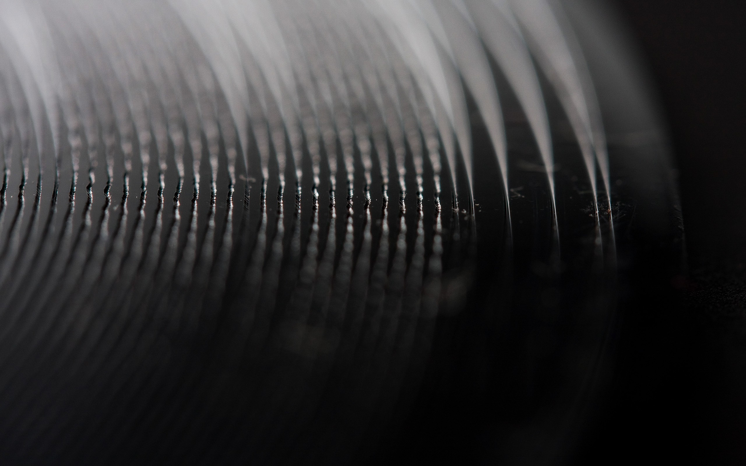 Record Vinyl Wallpaper 2560x1600 Record Vinyl Macro 2560x1600