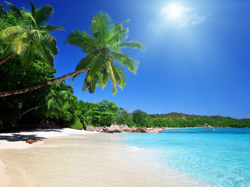 Summer Scenes Wallpaper   HD Wallpapers Backgrounds of Your Choice 1024x768