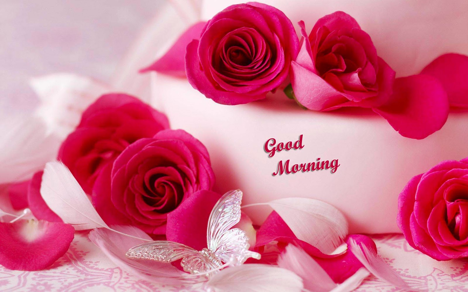Romantic Good Morning Wallpaper Wallpapersafari