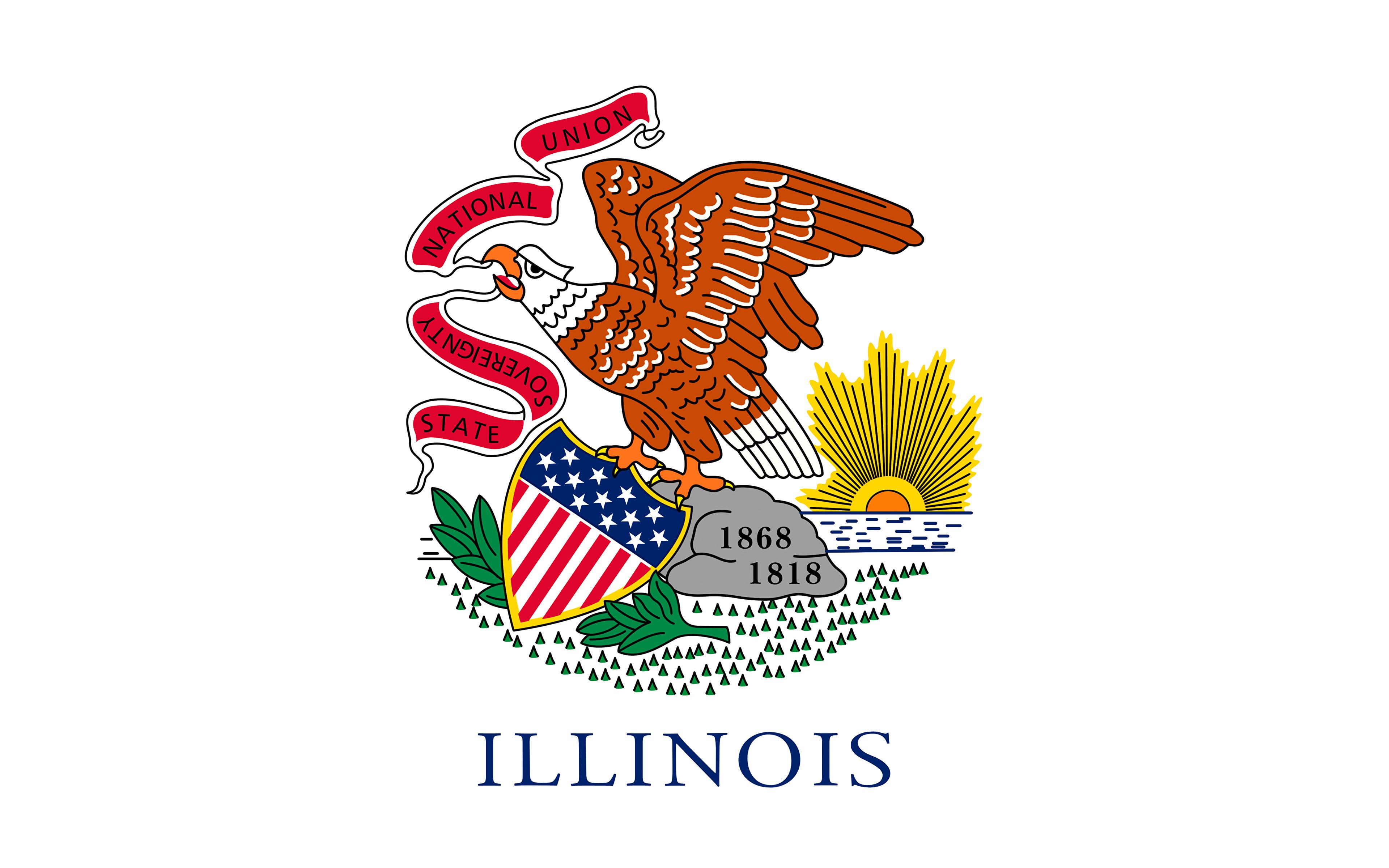 Photos Eagles USA Illinois Flag 3840x2400 3840x2400