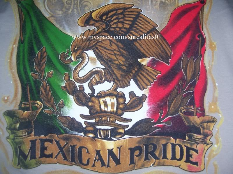 Cool Mexican Pride Backgrounds Mexican pride photo 800x600