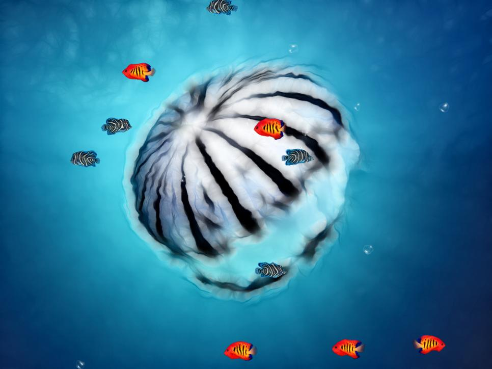 Ocean World Animated Wallpaper DesktopAnimatedcom 966x724