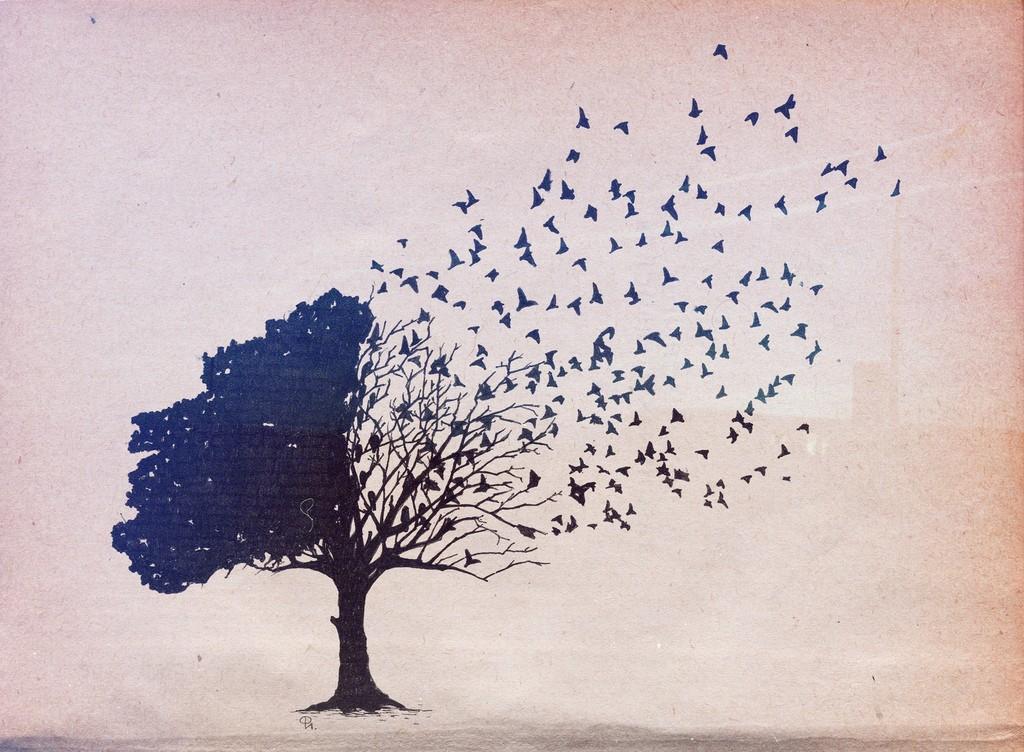 Trees Birds Wallpaper 1024x752 Trees Birds 1024x752