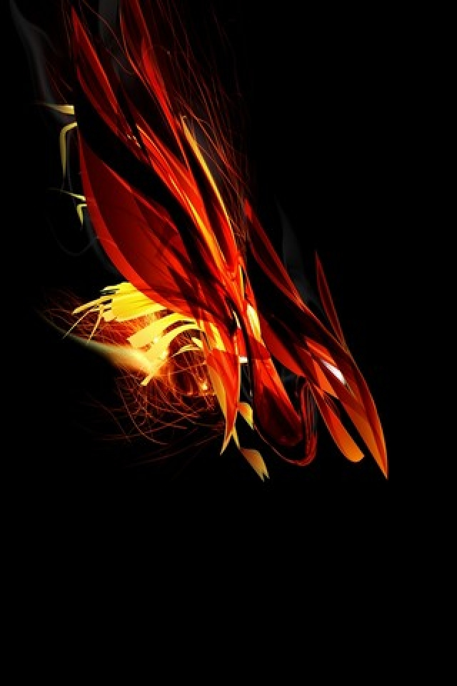 Fire Bird Swooped iPhone Wallpaper HD iPhone Wallpaper Gallery 640x960