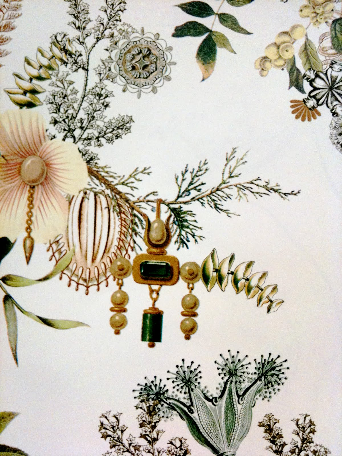 Free Download Anthropologie Background Anthropologie